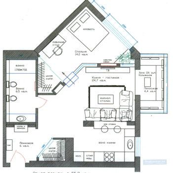 Planirovka-v-odnokomnatnatnoj-kvartire-1-kom-55-kv-m-1